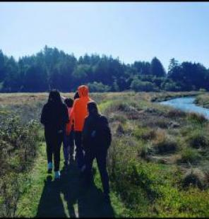 Students enjoy a nature walk at the Freshwater Farm Reserve.